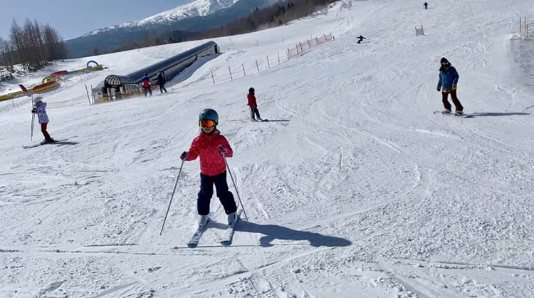 ゲレンデを滑るスキーヤー  自動的に生成された説明