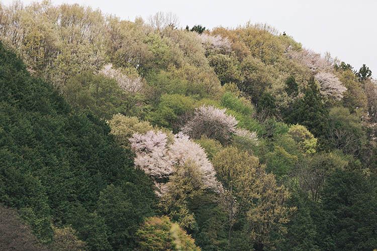 飯田の風景2